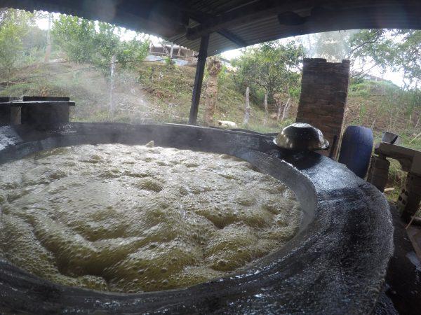 Moscovado Zucker kochen Madre Tierra