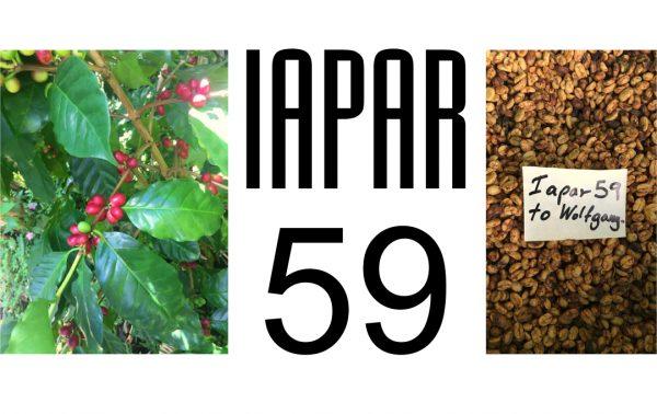 IAPAR 59 Collage